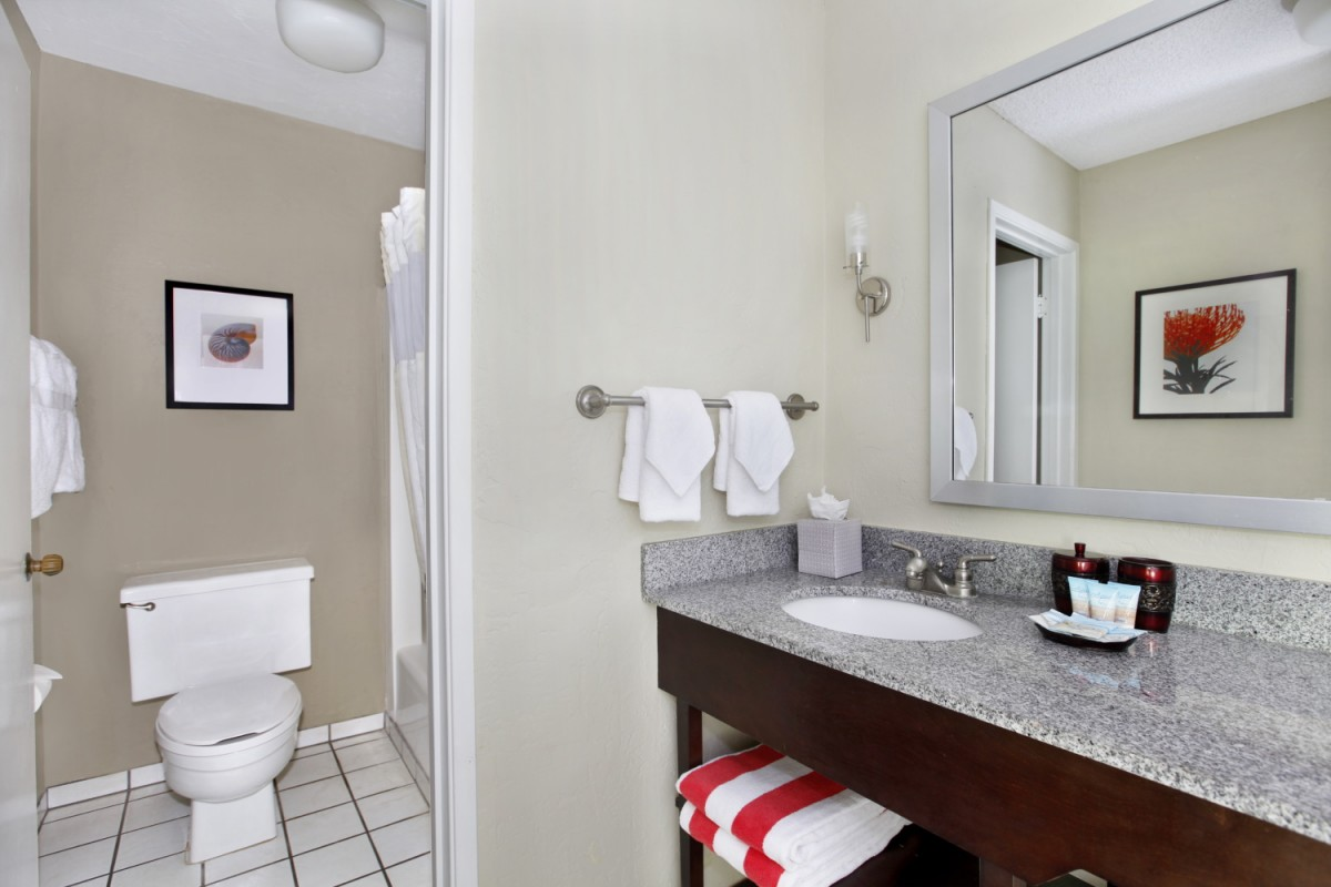 Orchid Hale Dressing & Bathroom