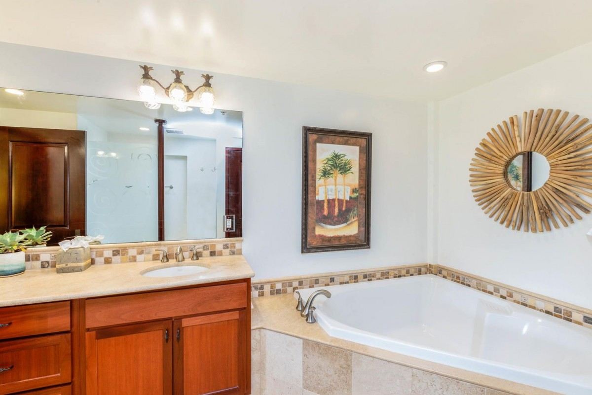 D104 2nd Master Suite Soaking Tub