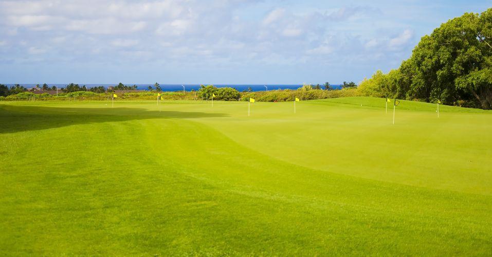 Kaui Golf Course