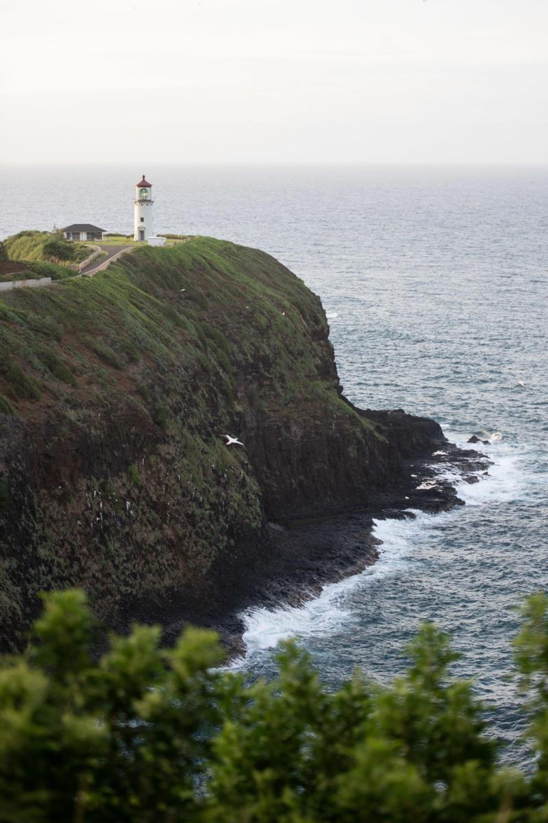 kilauea lighthouse on kauai hawaii