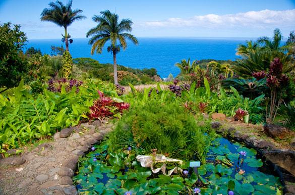 Kauai Botanical Garden