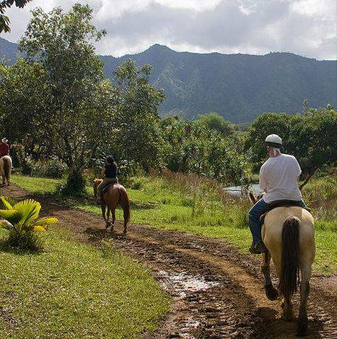 horesback riding kauai